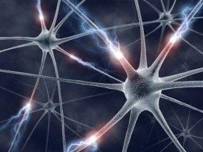 Πώς οι κυτταρικές αναμνήσεις προκαλούν αρνητικά συμπτώματα στη ζωή μας