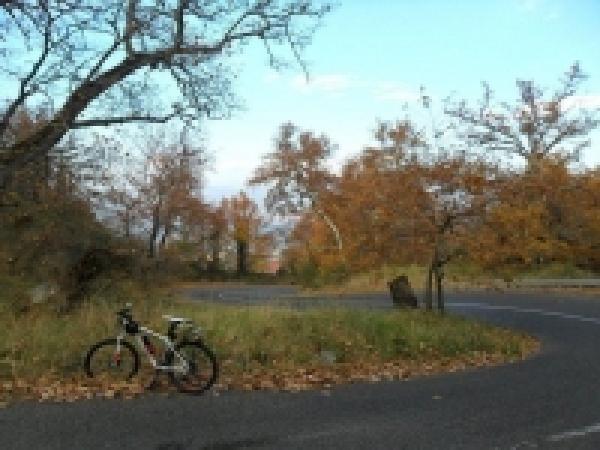 Ποδηλάτες Λαμίας